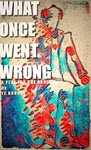 What Once Went Wrong: A Play for the Radio by T E Hodden