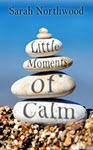 Little Moments of Calm by Sarah Northwood